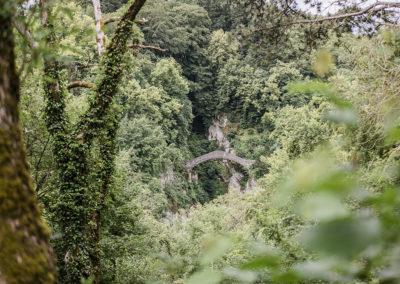 Forst (Inzigkofen) - 00030_1000