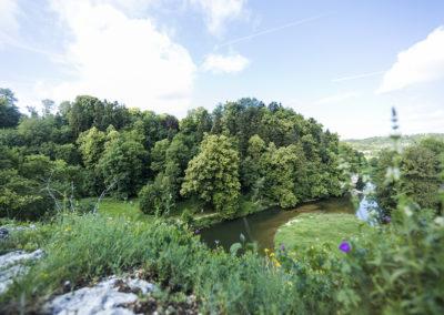 Forst (Inzigkofen) - 00245_1000